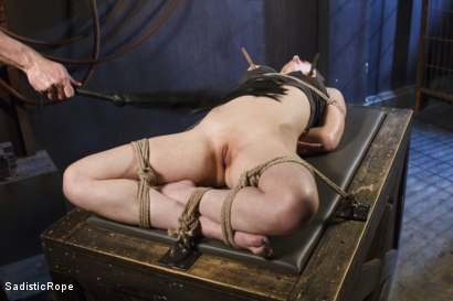 Photo number 10 from Power Exchange shot for Sadistic Rope on Kink.com. Featuring Casey Calvert in hardcore BDSM & Fetish porn.