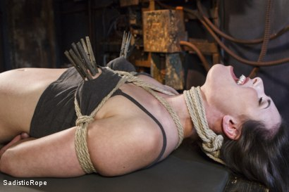 Photo number 15 from Power Exchange shot for Sadistic Rope on Kink.com. Featuring Casey Calvert in hardcore BDSM & Fetish porn.