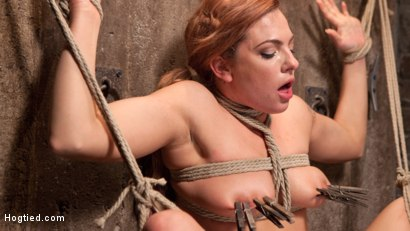 Photo number 15 from Dahlia in the Sky shot for Hogtied on Kink.com. Featuring Dahlia Sky in hardcore BDSM & Fetish porn.