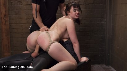 Photo number 11 from Jodi Taylor and the Slave Trainer shot for The Training Of O on Kink.com. Featuring Owen Gray and Jodi Taylor in hardcore BDSM & Fetish porn.