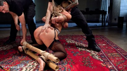 Photo number 4 from Slave Training a Big Tit Blonde Bombshell In Bondage, Day One shot for The Training Of O on Kink.com. Featuring Cherie DeVille and Tommy Pistol in hardcore BDSM & Fetish porn.