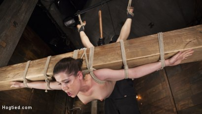 Photo number 2 from Hot 19 Year Old in Tormenting Bondage shot for Hogtied on Kink.com. Featuring Kasey Warner in hardcore BDSM & Fetish porn.