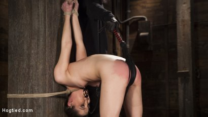 Photo number 13 from Hot 19 Year Old in Tormenting Bondage shot for Hogtied on Kink.com. Featuring Kasey Warner in hardcore BDSM & Fetish porn.