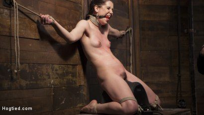 Photo number 3 from Hot 19 Year Old in Tormenting Bondage shot for Hogtied on Kink.com. Featuring Kasey Warner in hardcore BDSM & Fetish porn.