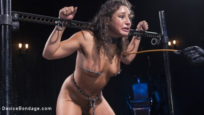 Photo number 4 from Danger Ahead shot for Device Bondage on Kink.com. Featuring Abella Danger and Orlando in hardcore BDSM & Fetish porn.