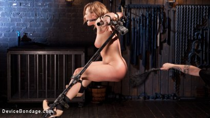 Photo number 4 from Damage Me Please!! shot for Device Bondage on Kink.com. Featuring Dahlia Sky in hardcore BDSM & Fetish porn.