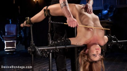 Photo number 15 from Damage Me Please!! shot for Device Bondage on Kink.com. Featuring Dahlia Sky in hardcore BDSM & Fetish porn.