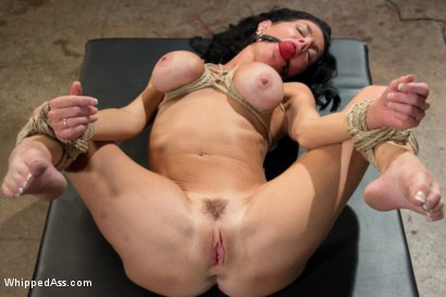 Photo number 10 from MILF Squirts for Hours: Veronica Avluv double fisted, anally fucked! shot for Whipped Ass on Kink.com. Featuring Aiden Starr and Veronica Avluv in hardcore BDSM & Fetish porn.