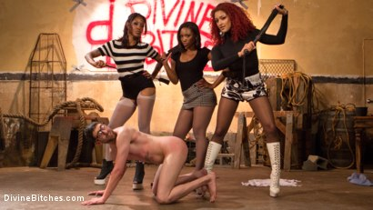 Photo number 14 from Three The Hard Way shot for Divine Bitches on Kink.com. Featuring Jay Wimp, Daisy Ducati, Lotus Lain and Chanell Heart in hardcore BDSM & Fetish porn.