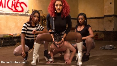 Photo number 1 from Three The Hard Way shot for Divine Bitches on Kink.com. Featuring Jay Wimp, Daisy Ducati, Lotus Lain and Chanell Heart in hardcore BDSM & Fetish porn.