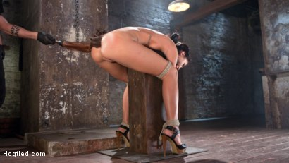 Photo number 6 from Sabrina Banks Used and Abused in Hardcore Bondage shot for Hogtied on Kink.com. Featuring Sabrina Banks in hardcore BDSM & Fetish porn.