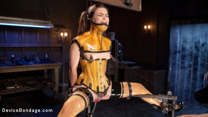 Photo number 6 from Whore Bound in a Euphoria of Depravity shot for Device Bondage on Kink.com. Featuring Juliette March in hardcore BDSM & Fetish porn.
