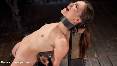 Photo number 16 from Whore Bound in a Euphoria of Depravity shot for Device Bondage on Kink.com. Featuring Juliette March in hardcore BDSM & Fetish porn.