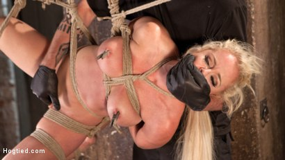 Photo number 11 from Blonde Bombshell Explodes in Extreme Bondage!! shot for Hogtied on Kink.com. Featuring Nikki Delano in hardcore BDSM & Fetish porn.