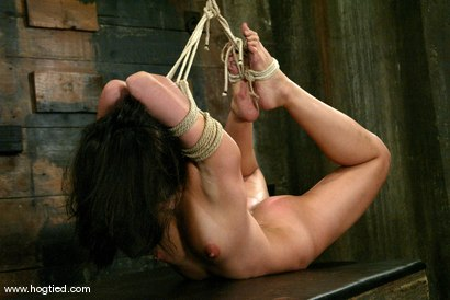 Photo number 6 from Crimson Ninja shot for Hogtied on Kink.com. Featuring Crimson Ninja in hardcore BDSM & Fetish porn.