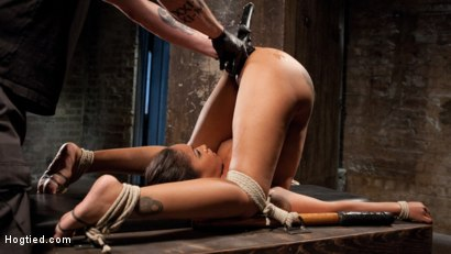 Photo number 16 from Penthouse Pet, Skin Diamond, in Devastating Bondage  shot for Hogtied on Kink.com. Featuring Skin Diamond and The Pope in hardcore BDSM & Fetish porn.