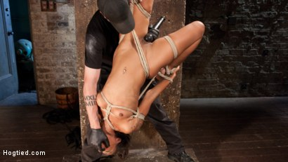 Photo number 17 from Penthouse Pet, Skin Diamond, in Devastating Bondage  shot for Hogtied on Kink.com. Featuring Skin Diamond and The Pope in hardcore BDSM & Fetish porn.