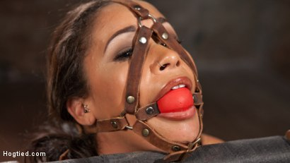 image Nipple clamped toyed and spanked