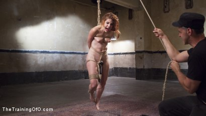 Photo number 7 from Help Me Understand The Pain - Amarna Miller, Day One shot for The Training Of O on Kink.com. Featuring Amarna Miller and Bill Bailey in hardcore BDSM & Fetish porn.