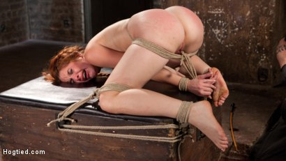 Photo number 13 from Sexy Spanish Slut Bound with Pain, Hot Wax and Orgasms!!! shot for Hogtied on Kink.com. Featuring Amarna Miller in hardcore BDSM & Fetish porn.