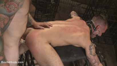 Photo number 10 from Slave #401 submits his entire body to the whims of Mr. Wilde shot for Bound Gods on Kink.com. Featuring Christian Wilde and Chris Harder in hardcore BDSM & Fetish porn.