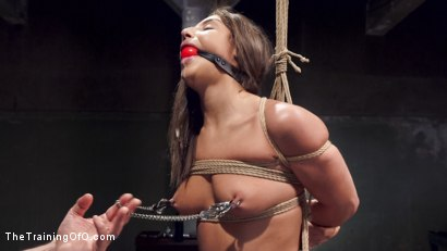 Photo number 2 from Hardcore Anal in Strict Bondage, 19 Year Old Abella Danger, Day One shot for The Training Of O on Kink.com. Featuring Abella Danger and Owen Gray in hardcore BDSM & Fetish porn.