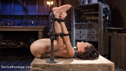 Photo number 13 from Intolerable Brat. shot for Device Bondage on Kink.com. Featuring Gabriella Paltrova and The Pope in hardcore BDSM & Fetish porn.
