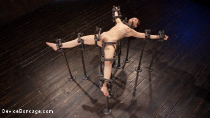 Photo number 14 from Intolerable Brat. shot for Device Bondage on Kink.com. Featuring Gabriella Paltrova and The Pope in hardcore BDSM & Fetish porn.