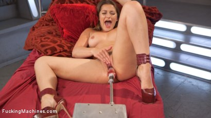 Photo number 4 from Mega Babe Dani Daniels Can't Get Enough!!! shot for Fucking Machines on Kink.com. Featuring Dani Daniels in hardcore BDSM & Fetish porn.