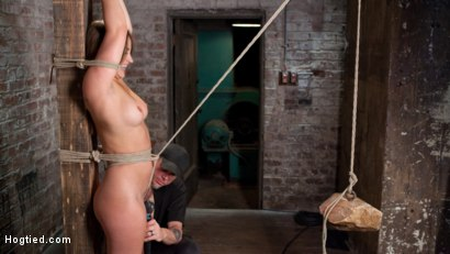 Photo number 2 from Dani Daniels in Brutal Bondage, Tormented, and Made to Cum Uncontrollably. shot for Hogtied on Kink.com. Featuring Dani Daniels and The Pope in hardcore BDSM & Fetish porn.