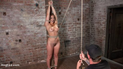 Photo number 4 from Dani Daniels in Brutal Bondage, Tormented, and Made to Cum Uncontrollably. shot for Hogtied on Kink.com. Featuring Dani Daniels and The Pope in hardcore BDSM & Fetish porn.