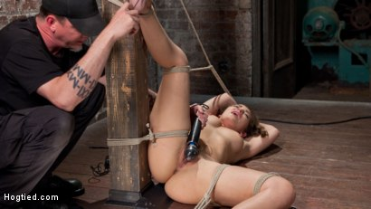 Photo number 7 from Dani Daniels in Brutal Bondage, Tormented, and Made to Cum Uncontrollably. shot for Hogtied on Kink.com. Featuring Dani Daniels and The Pope in hardcore BDSM & Fetish porn.