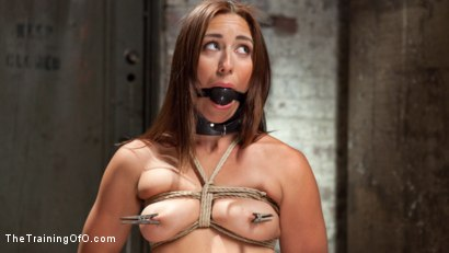 Photo number 3 from Forging a Slave shot for The Training Of O on Kink.com. Featuring Rilynn Rae and Owen Gray in hardcore BDSM & Fetish porn.
