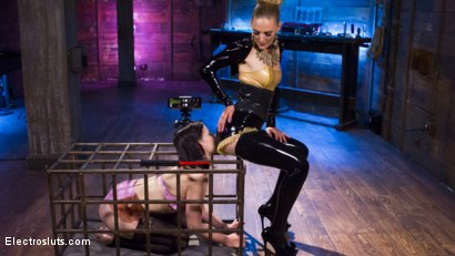 Photo number 1 from The Debt Collector  shot for Electro Sluts on Kink.com. Featuring Freya French and Mona Wales in hardcore BDSM & Fetish porn.