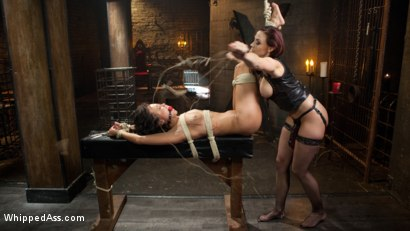 Photo number 7 from Property of Chanel Preston shot for Whipped Ass on Kink.com. Featuring Chanel Preston and Mia Austin in hardcore BDSM & Fetish porn.