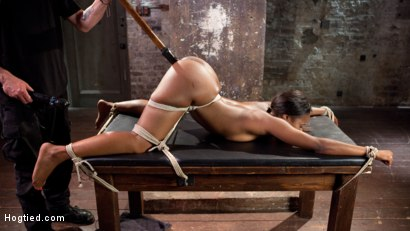 Photo number 1 from Ebony Super Slut in Tight Bondage, Grueling Punishment, and Mind Blowing Orgasms!!! shot for Hogtied on Kink.com. Featuring Chanell Heart and The Pope in hardcore BDSM & Fetish porn.
