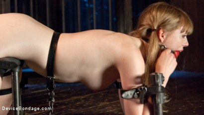 Photo number 13 from Fair Skinned First Timer Begs for Extreme Domination!! shot for Device Bondage on Kink.com. Featuring Dolly Leigh and The Pope in hardcore BDSM & Fetish porn.