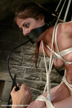 Photo number 11 from Alice Sadique shot for Water Bondage on Kink.com. Featuring Alice Sadique in hardcore BDSM & Fetish porn.