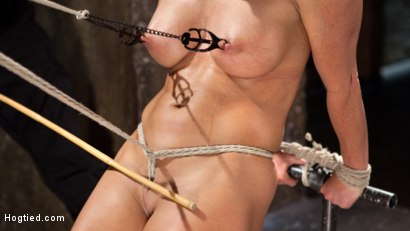 Photo number 7 from Ariel X - Extreme Bondage, Brutal Torment, and Squirting Orgasms!!! shot for hogtied on Kink.com. Featuring Ariel X and The Pope in hardcore BDSM & Fetish porn.