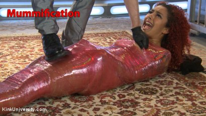 Mummification Bondage Play