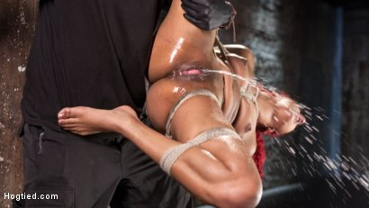 Photo number 1 from  Non Stop Squirting, Fisting and Torment in Brutal Bondage shot for Hogtied on Kink.com. Featuring Daisy Ducati and The Pope in hardcore BDSM & Fetish porn.