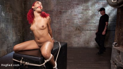 Photo number 11 from  Non Stop Squirting, Fisting and Torment in Brutal Bondage shot for Hogtied on Kink.com. Featuring Daisy Ducati and The Pope in hardcore BDSM & Fetish porn.