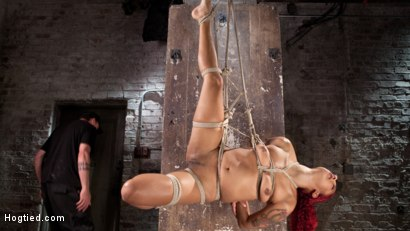 Photo number 10 from  Non Stop Squirting, Fisting and Torment in Brutal Bondage shot for Hogtied on Kink.com. Featuring Daisy Ducati and The Pope in hardcore BDSM & Fetish porn.