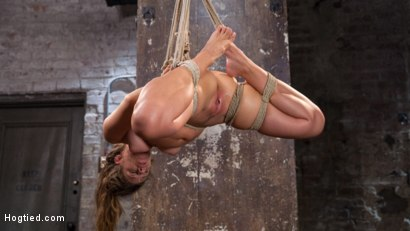 Photo number 13 from Fresh Meat in Extreme Bondage Suffering Through Torment and Squirting Orgasms!! shot for Hogtied on Kink.com. Featuring Cassidy Klein and The Pope in hardcore BDSM & Fetish porn.