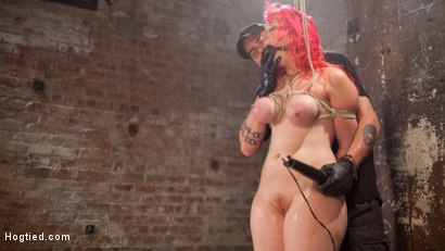 Photo number 14 from Voluptuous Sex Kitten in Brutal Bondage and Ass Fucked shot for Hogtied on Kink.com. Featuring Proxy Paige and The Pope in hardcore BDSM & Fetish porn.
