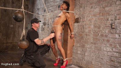 Photo number 12 from Double Your Pleasure Double Your Fun shot for Hogtied on Kink.com. Featuring Mia Austin, Nikki Darling and The Pope in hardcore BDSM & Fetish porn.