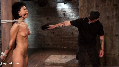 Photo number 14 from Double Your Pleasure Double Your Fun shot for Hogtied on Kink.com. Featuring Mia Austin, Nikki Darling and The Pope in hardcore BDSM & Fetish porn.