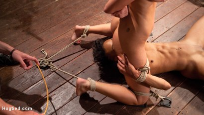 Photo number 16 from Double Your Pleasure Double Your Fun shot for Hogtied on Kink.com. Featuring Mia Austin, Nikki Darling and The Pope in hardcore BDSM & Fetish porn.