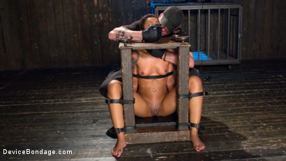 Photo number 5 from Penthouse Pet Skin Diamond Squirting in Brutal Bondage and Punished!! shot for Device Bondage on Kink.com. Featuring Skin Diamond and The Pope in hardcore BDSM & Fetish porn.