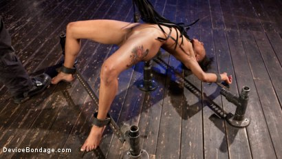 Photo number 10 from The Reason Why shot for Device Bondage on Kink.com. Featuring Nikki Darling and The Pope in hardcore BDSM & Fetish porn.